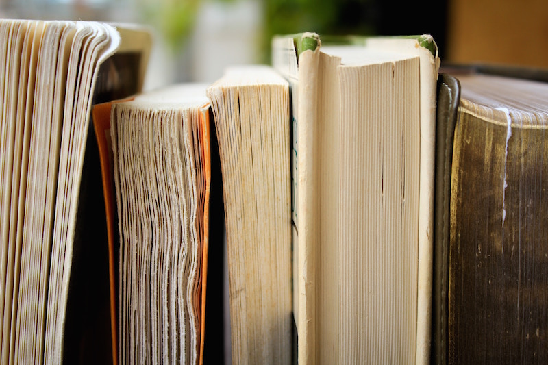 Photograph of books standing next to each other, page side showing